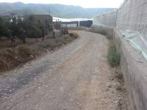 Camino de Almohara