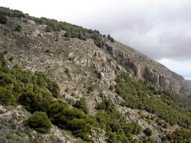 Loma de Los Cantuesos