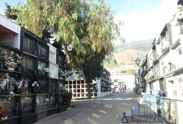 Una de las calles del cementerio de Dalías