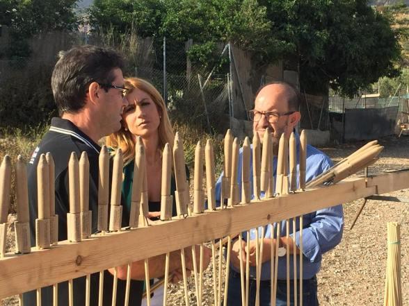 Cohetes Andalucia de Fiesta